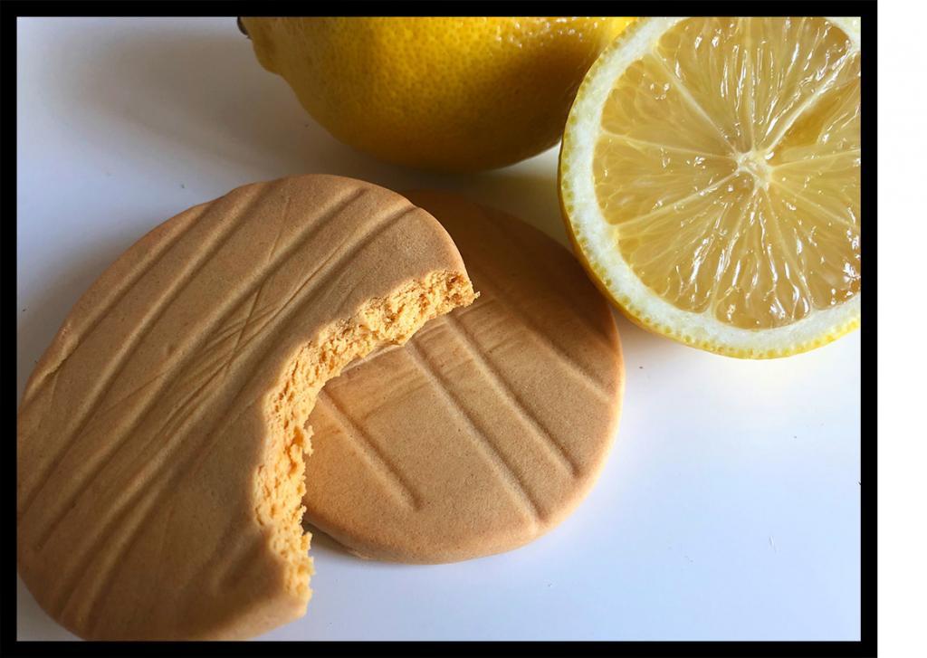 Fitness Cookies Kekse von Fit'n'Female Lemon