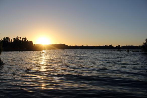 Schwimmen im See mit Sonnenuntergang